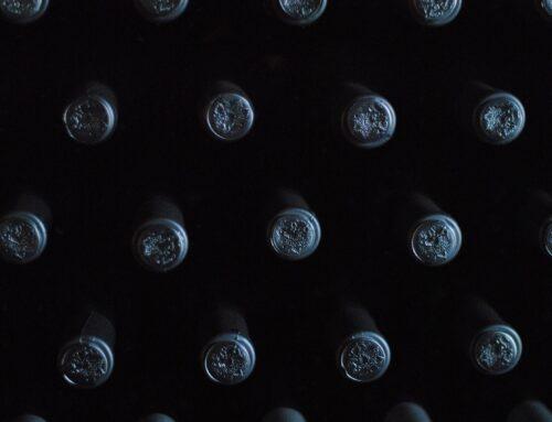 Warum soll ich meinen Wein professionell lagern?